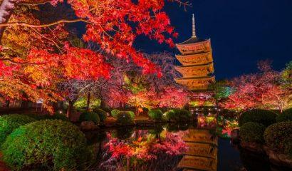 【2019年】京都の紅葉おすすめ名所TOP3|見頃と人気スポットを紹介