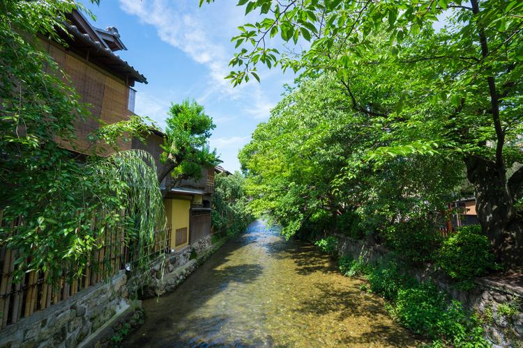 夏におすすめ京都のデートスポット
