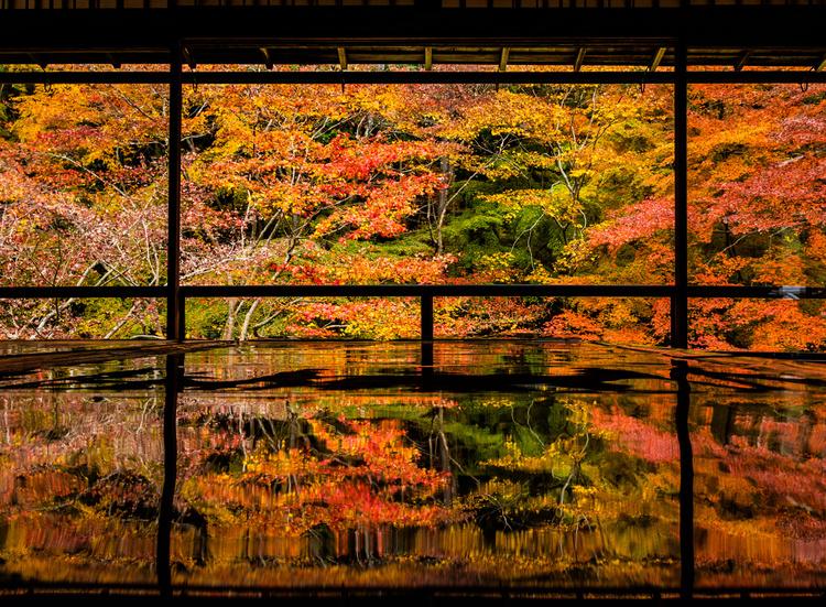 秋におすすめ京都のデートスポット