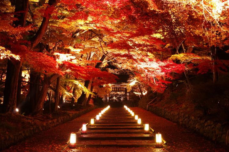 京都で人気の秋イベント