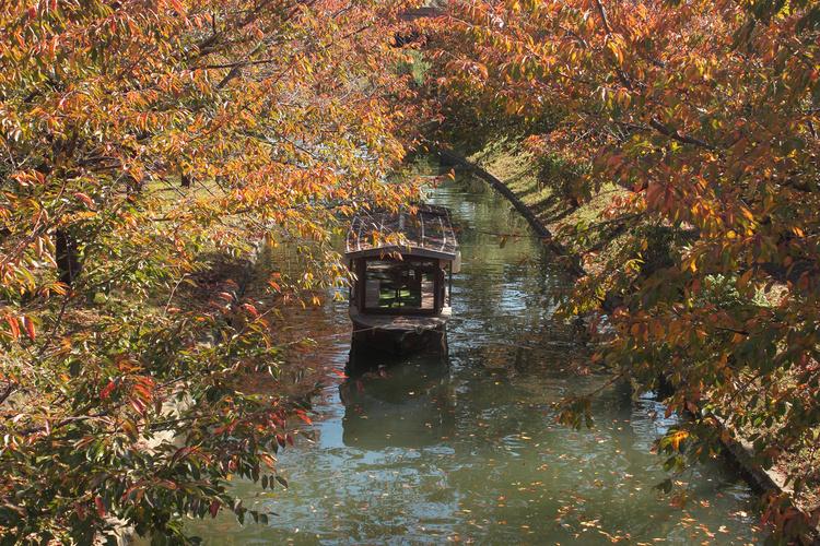 宇治川ライン・天ヶ瀬吊り橋