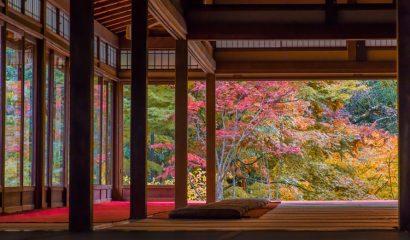 京都でインスタ映えするスポットやおしゃれなスイーツをご紹介!定番から穴場まで